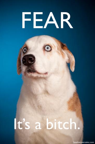 Fear...It's a bitch
